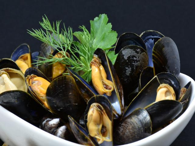 Mussels 3148429 1920