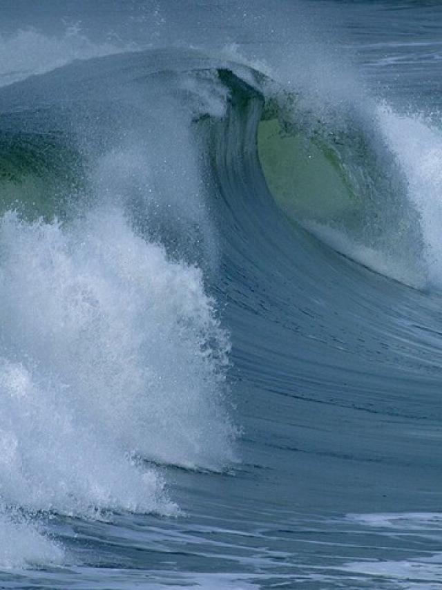 Water Roller 3645 640